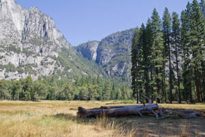 Cooks Meadow, Yosemite Valley